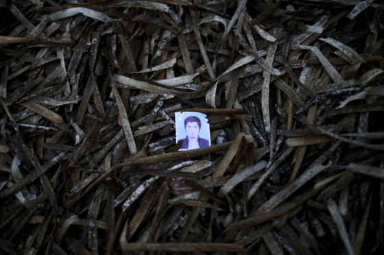 A passport photo left behind by a migrant is seen among seaweed on a beach on the Greek island of Lesbos, September 14, 2015. REUTERS/Alkis Konstantinidis