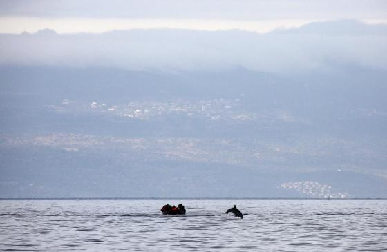 A dolphin jumps in front of a raft overcrowded by Syrian refugees while crossing a part of the Aegean Sea from Turkey (seen in the background) to the Greek island of Lesbos October 21, 2015. REUTERS/Yannis Behrakis