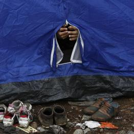 A Syrian refugee closes his family's tent at the Greek-FYROM border, near the village of Idomeni, August 22, 2015. REUTERS/Yannis Behrakis
