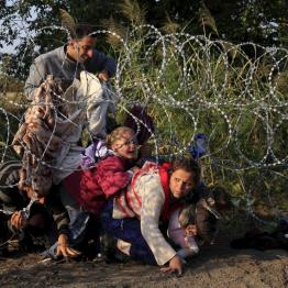 Syrian migrants cross under a fence as they enter Hungary at the border with Serbia, near Roszke, August 27, 2015. REUTERS/Bernadett Szabo