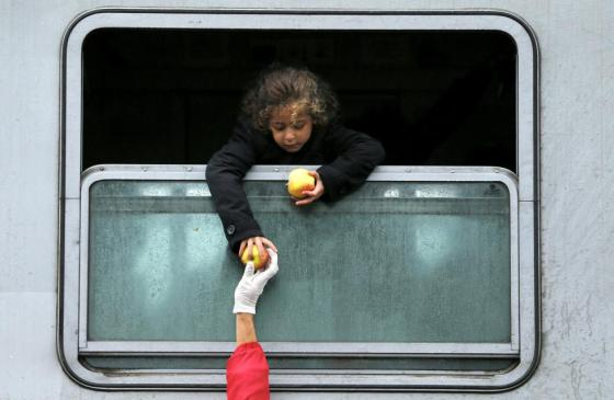A migrant child leans out of a train window to collect food at the railway station in Tovarnik, Croatia September 29, 2015. REUTERS/Antonio Bronic