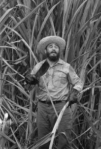 fidel-castro-en-una-plantacion-de-cana-de-azucar-16-de-julio-de-1969-fuente