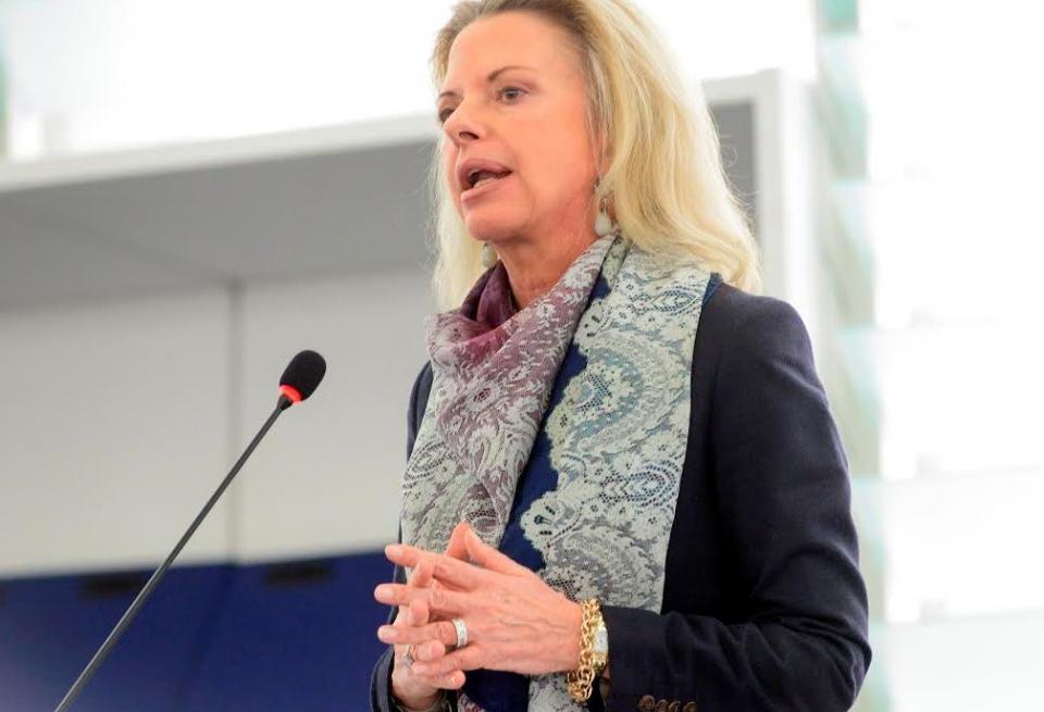 Κυρία Ελίζα Βόζεμπεργκ ας μην είμαστε κακοπροαίρετοι που καταργείτε το Σύνταγμα (Βίντεο)