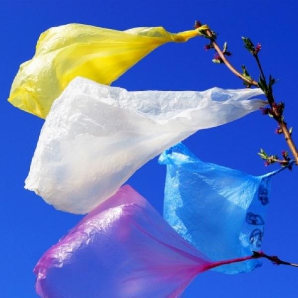 """Των """"πλαστικών σακουλών"""" ή των """"πλαστικών σακούλων;"""""""