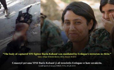 Barin Kobani kobane