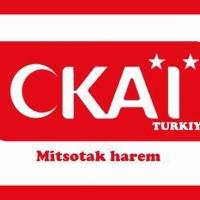 ΣΚΑΪ – «Οι Κούρδοι βομβαρδίζουν και σκοτώνουν Τούρκους»
