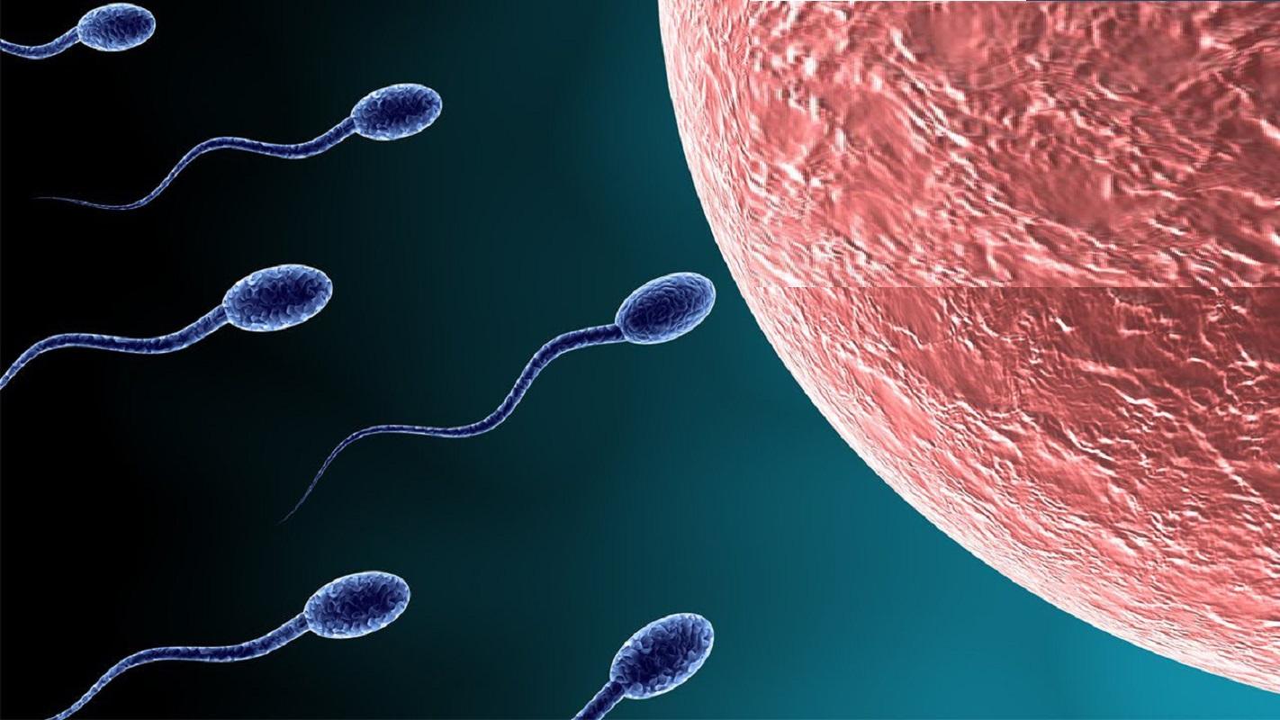 ΔΗΜΟΓΡΑΦΙΚΟ-Η ανδρική γονιμότητα «θύμα» της κλιματικής αλλαγής