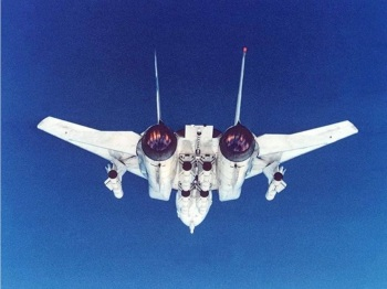 F-14 B Tomcat w Phoenix Missiles Doomsday ordinance rear view Fox3