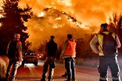 Φωτιά Τώρα Σχίνος Κορινθία Βυθούλας Μέγαρα Αλεποχώρι (6)