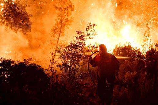 Φωτιά Τώρα Σχίνος Κορινθία Βυθούλας Μέγαρα Αλεποχώρι (7)