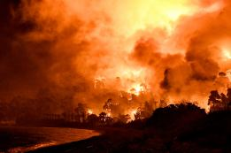 Φωτιά Τώρα Σχίνος Κορινθία Βυθούλας Μέγαρα Αλεποχώρι (10)
