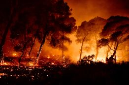 Φωτιά Τώρα Σχίνος Κορινθία Βυθούλας Μέγαρα Αλεποχώρι (1)